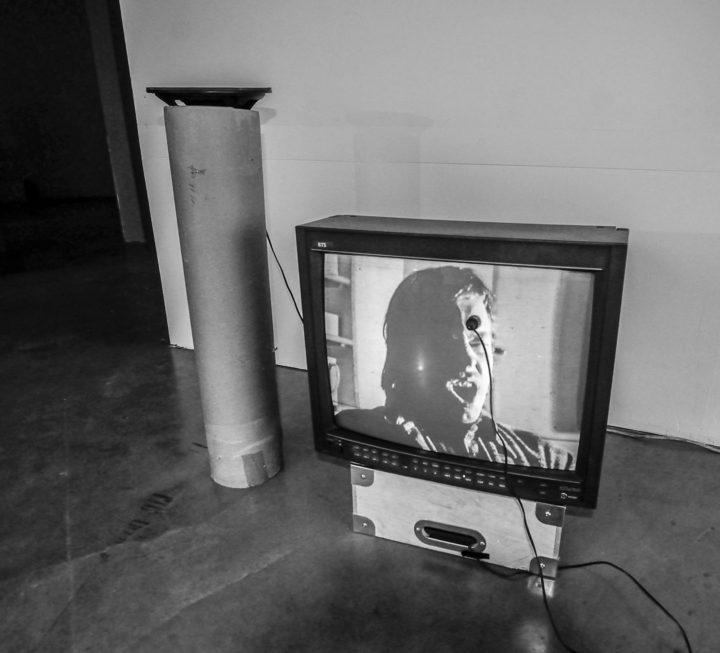 Television Hen